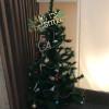 【一関院】メリークリスマス!