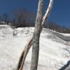【一関院】雪山